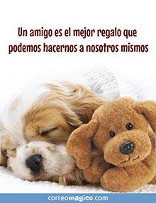 Un amigo es el mejor regalo que podemos hacernos a nosotros mismos