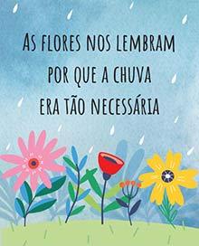 As flores nos lembram por que a chuva era tão necessária